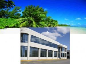 Société Offshore Nevis (IBC) et LLC